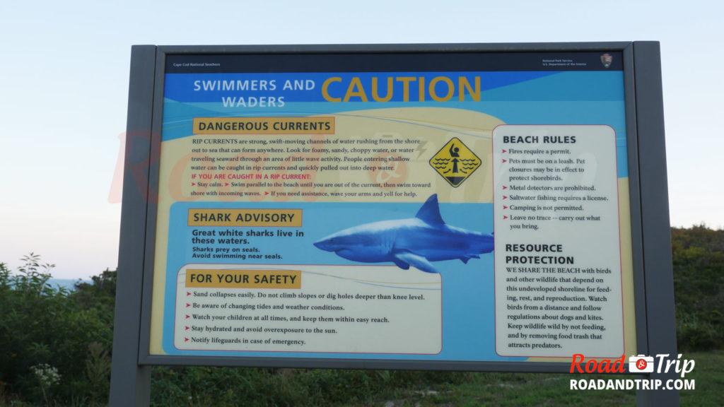 Attention aux requins pour la baignade