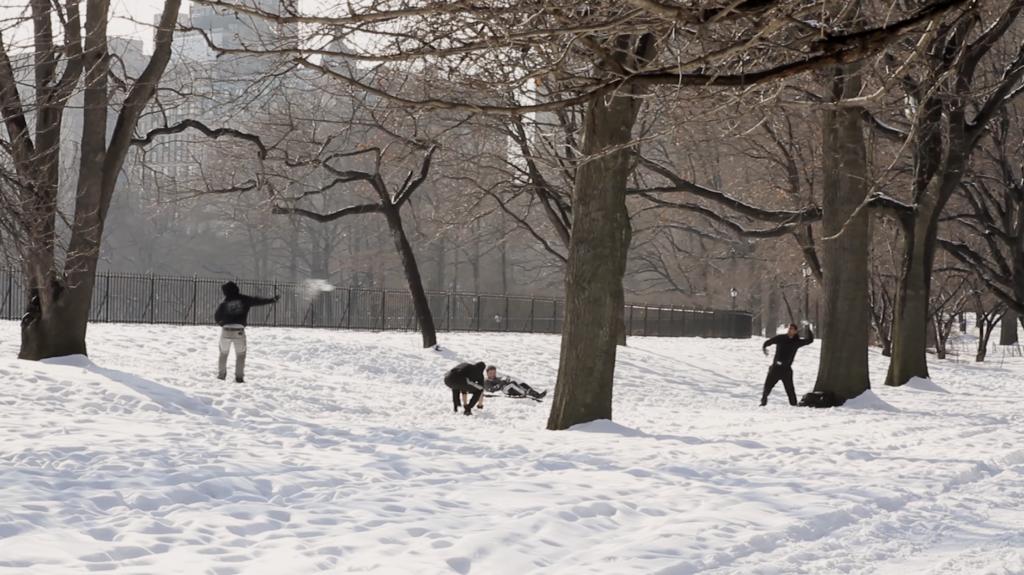 Bataille de boules de neige à Central Park