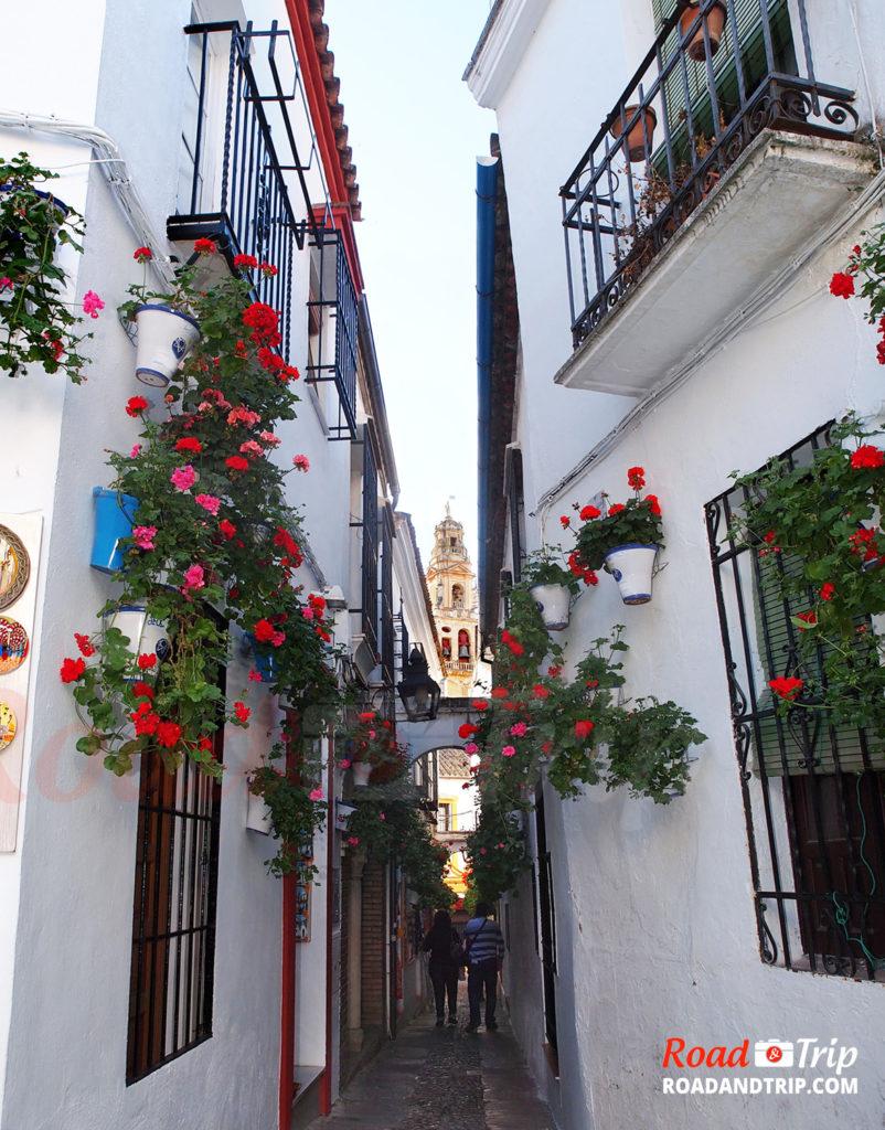 Calle de las Flores à Cordoue