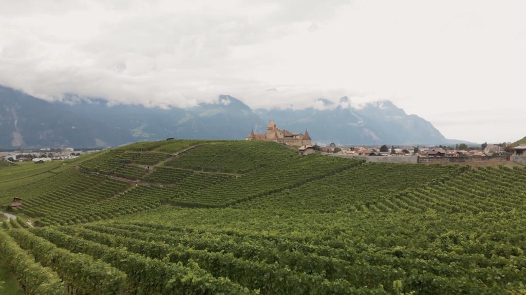 Château d'Aigle et ses vignes