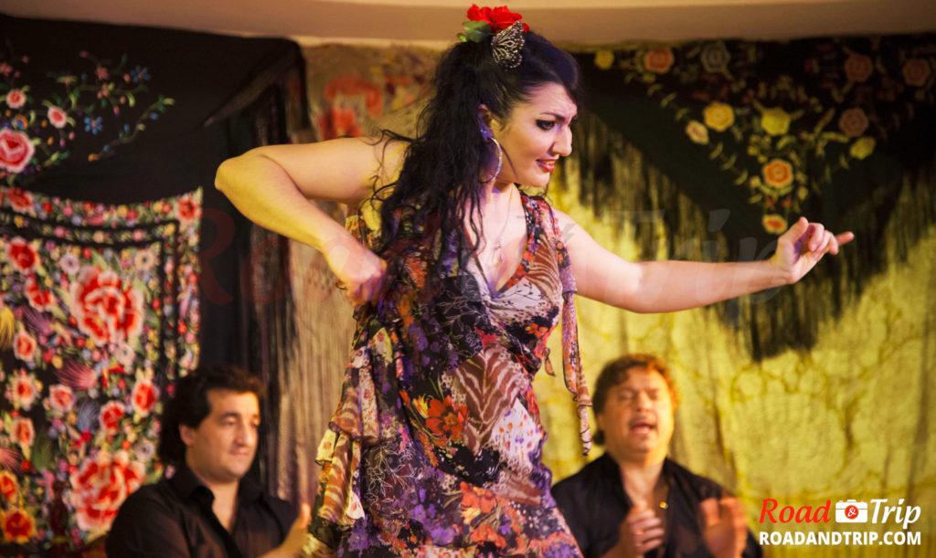 Flamenco vers Calle Echegaray