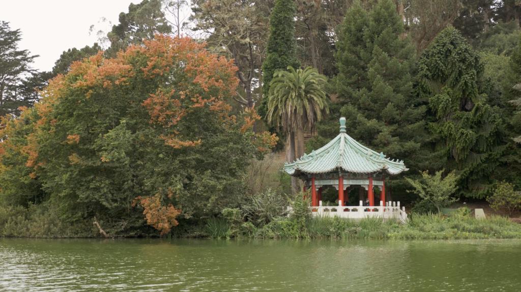 Golden Gate Park et ses étangs