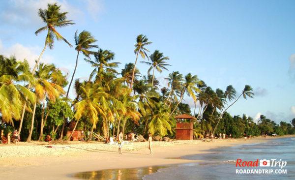 La plage des Salines en Martinique