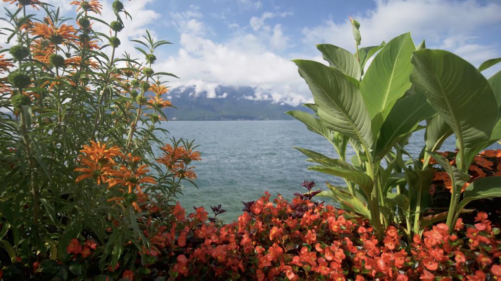 Lac Léman à Montreux
