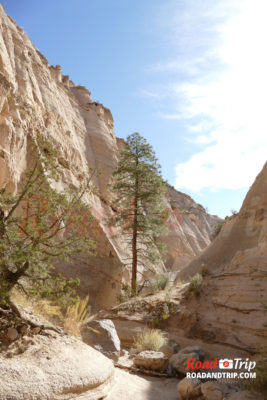 Le canyon de Tent Rocks