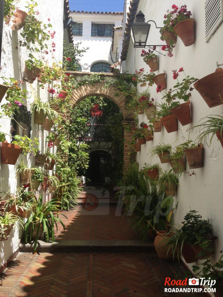 Les rues fleuries de Cordoue