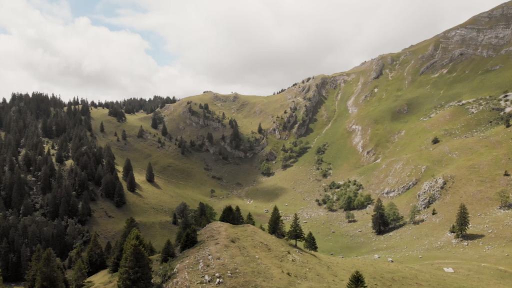 Panorama au Massif de la Dôle, Suisse