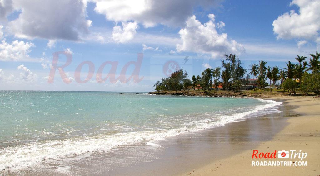 5 choses à voir et à faire en Martinique