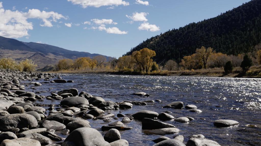 Rivière dans le Parc National de Yellowstone