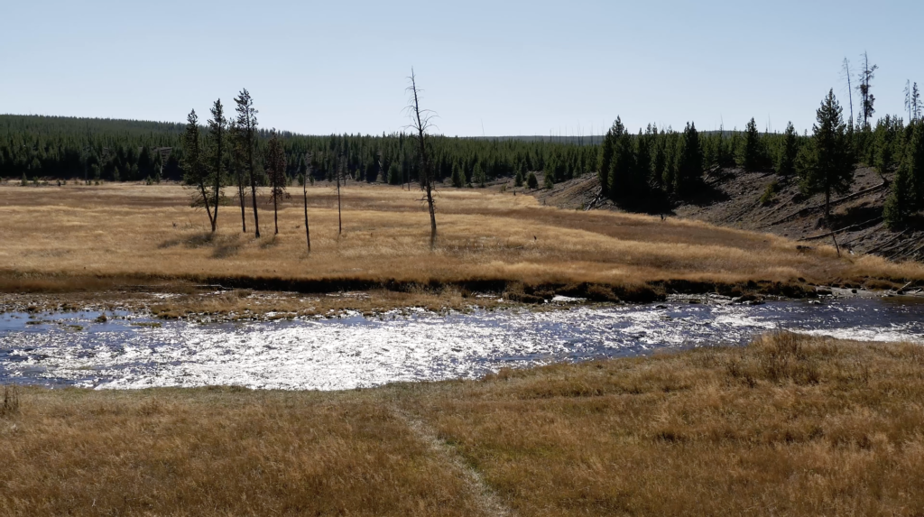 Rivière de Yellowstone