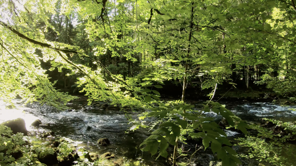 Rivière en Suisse Romande