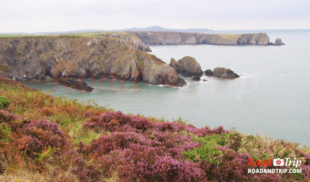 Sur le chemin côtier de Pembrokeshire