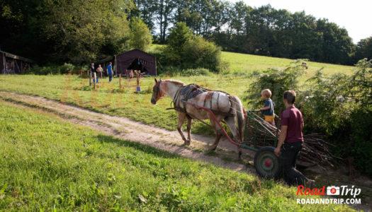 Vie locale en Creuse