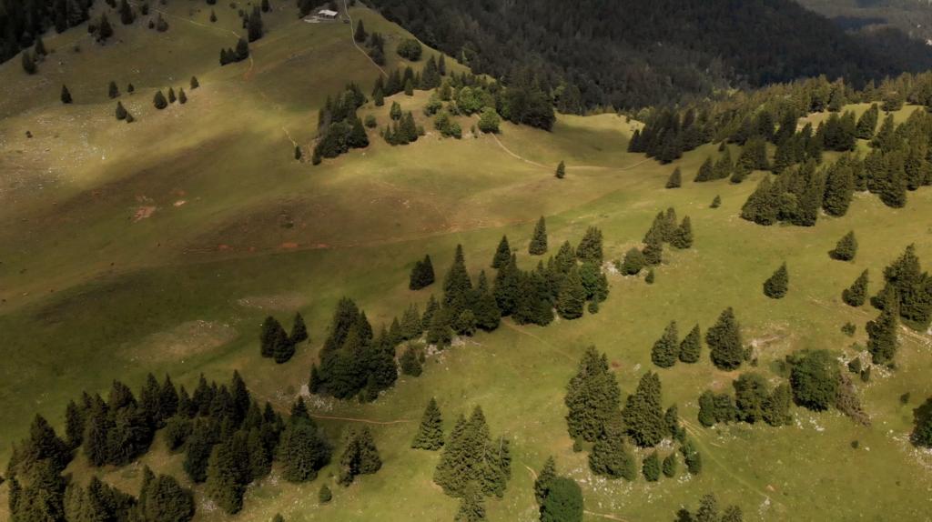 Vue aérienne dans le Canton de Vaud, Suisse