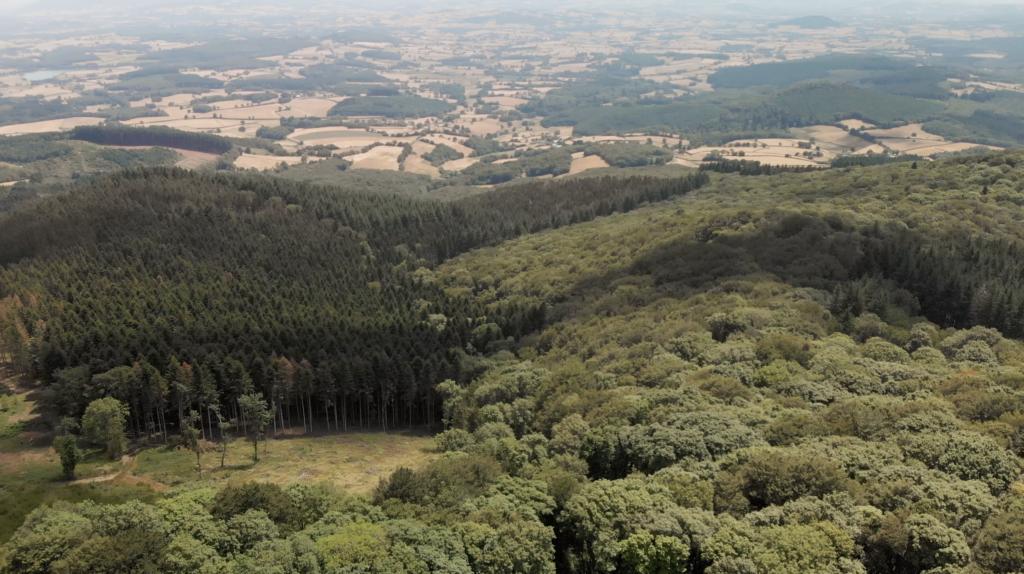 Vue aérienne du Mont Beuvray