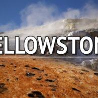 Visiter Yellowstone en 2 jours